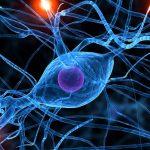 kinesio-neuropsicologia